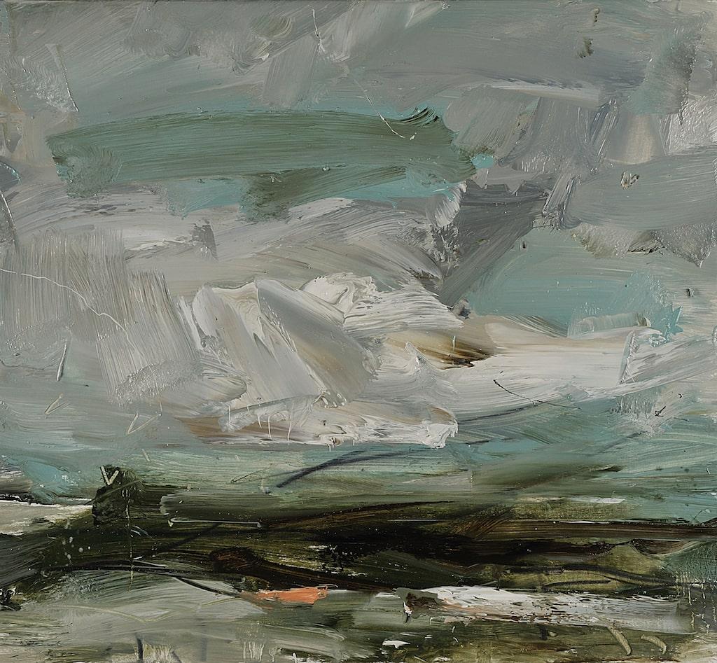 Louise Balaam 'Grey-green light, Hebrides'